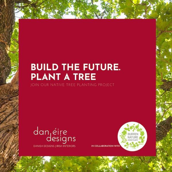 Dan Eire Designs Tree Planting Project